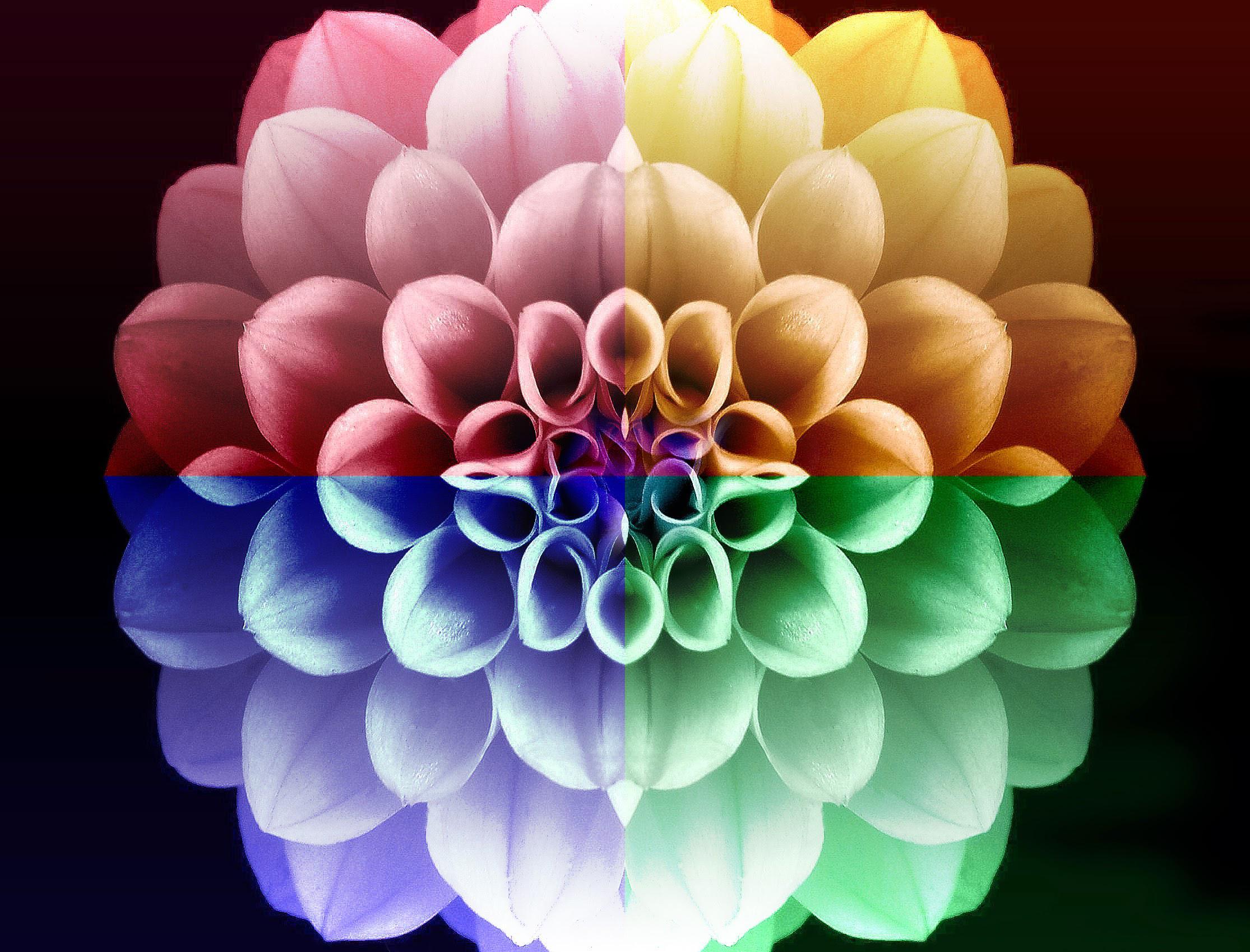 Gestalt-terapia: o que é?